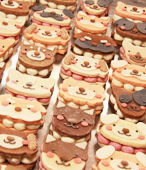 ワンバーグ発酵ケーキ 【ウェルシュコーギーみたいなタイプ】