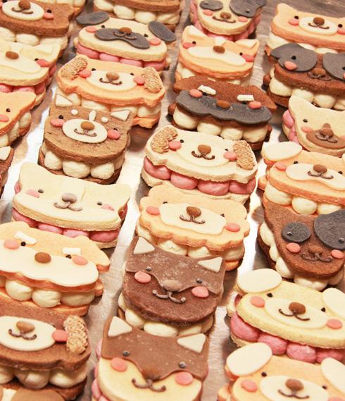 ワンバーグ発酵ケーキ 【プードルみたいなタイプ】
