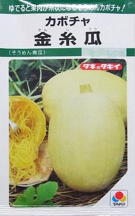 カボチャの種/金糸瓜(そうめん南瓜)