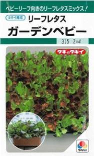 リーフレタスの種/ガーデンベビー