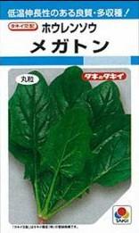 ホウレンソウの種/メガトン 25mL