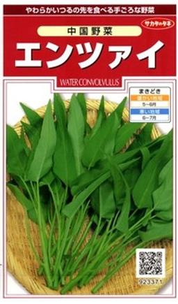 中国野菜 エンツァイの種