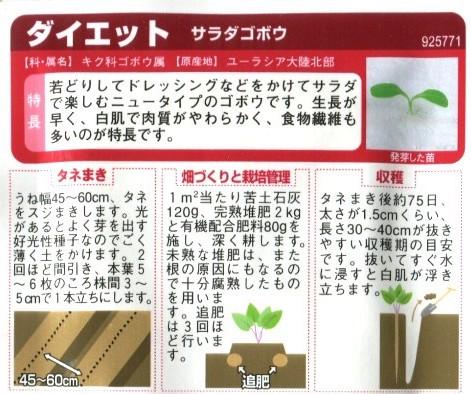 サラダゴボウ ダイエットの種