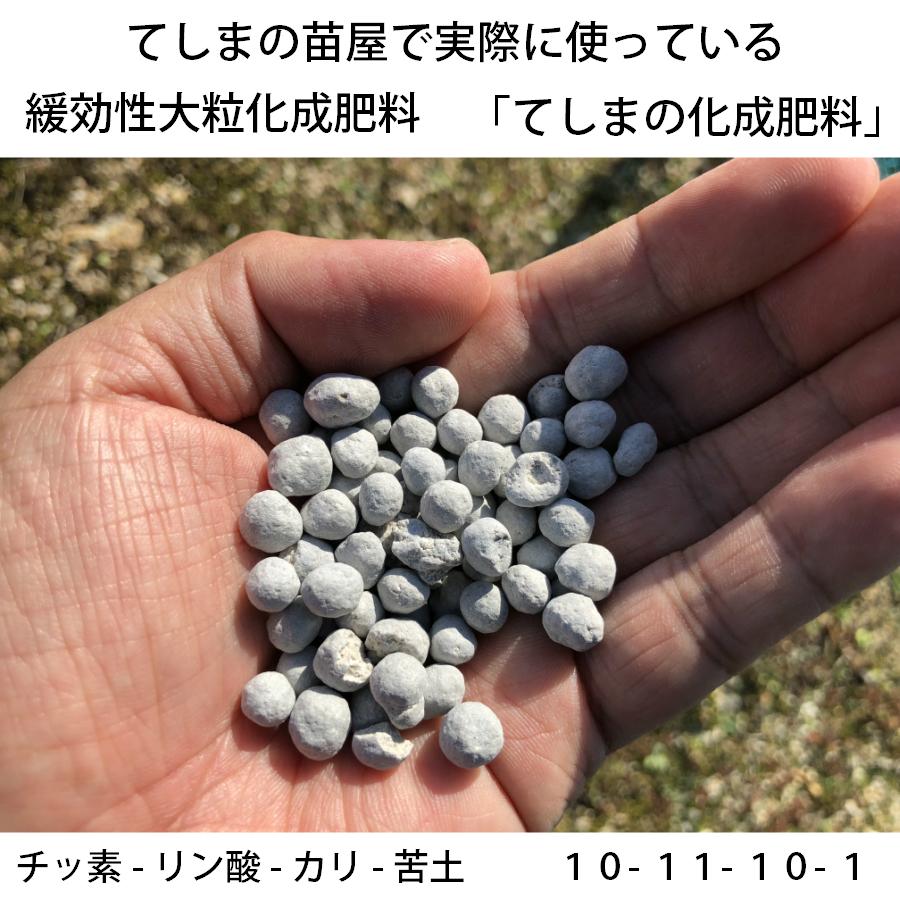 【てしまの化成肥料】 野菜・花全般に使える化成肥料 900g