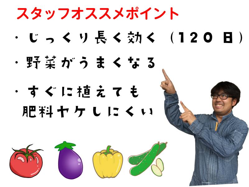 【てしまの有機肥料-元肥専用】 野菜・花全般に使える有機肥料 900g
