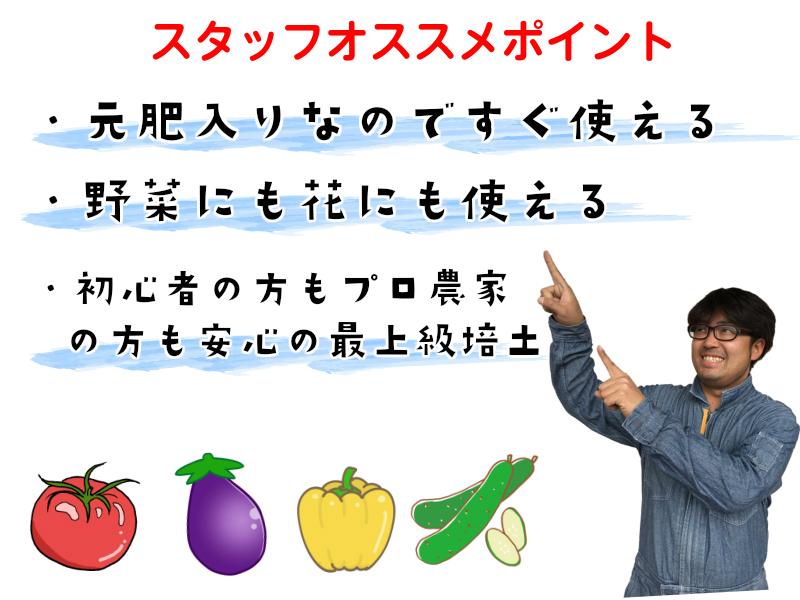 【てしまの土】 【40リットル】 【超培土】 【送料無料※】プロがオススメする培養土農家さんと同じ土で育てよう ※送料無料は北海道、沖縄、離島部は除く、