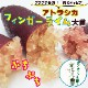 送料無料 フィンガーライム(茶)苗木 キャビアライム アトラシカ 18cm鉢 柑橘 苗木