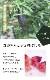 送料無料 フィンガーライム(赤)苗木 キャビアライム ジャーリーレッド 18cm鉢 柑橘 苗木