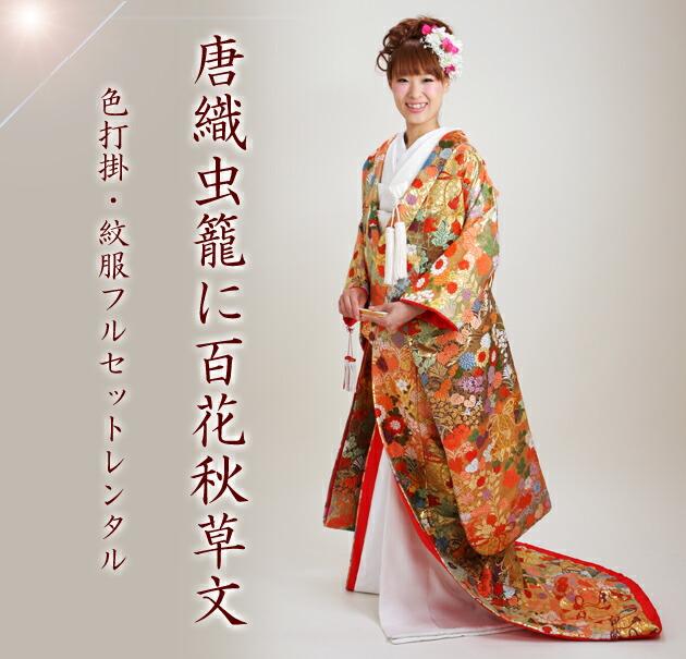 色打掛レンタル 金色/唐織虫籠に百花秋草文 NT-723