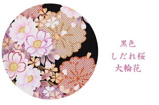 卒業式 袴 レンタル【中振袖+袴】 黒色 しだれ桜大輪花 身長〜163cm,11号〜15号 NT-F228