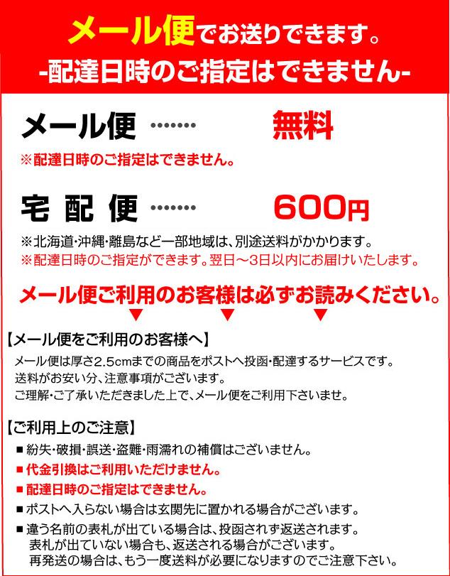 肌襦袢(M・L)【メール便送料無料】男性用
