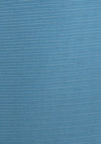 色無地 【絽】 レンタル 7月〜8月 ブルー色 NT-RO-5