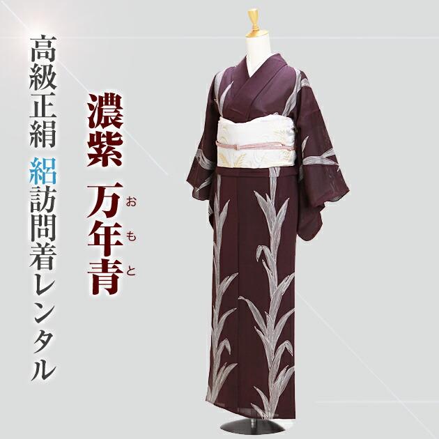 訪問着 レンタル 【絽】(7月/8月向け着物)濃紫色 NT-201