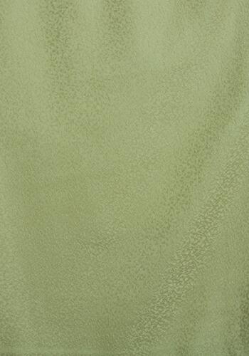 色無地 【単衣】【広幅】 レンタル 6月・9月 〔高級正絹〕 モスグリーン色 NT-L201