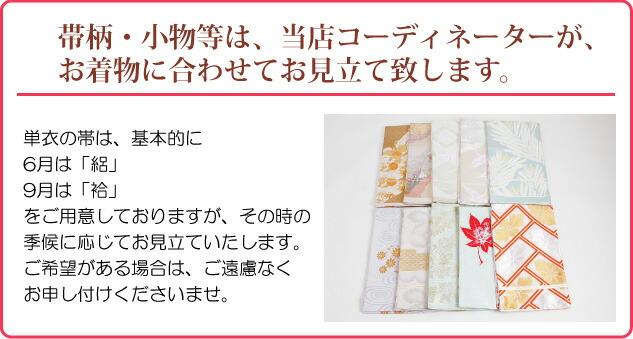 色無地 【単衣】【広幅】 レンタル 6月・9月 ブルー色 NT-L204
