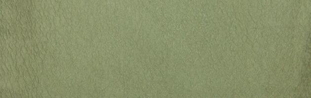 色無地 レンタル 袷 10月〜5月向け 高級正絹 モスグリーン色 着物 一つ紋 お茶会 入学式 卒業式 NT-83