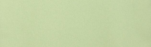 色無地 レンタル 袷 10月〜5月向け うぐいす色 着物 一つ紋 お茶会 入学式 卒業式 NT-90