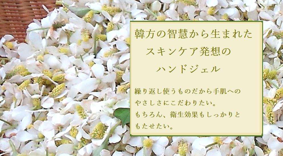 50%off  ハンドクリアージェル 250ml 通常価格 1850円(税別)