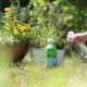 EM Garden イーエムガーデン 植物の栄養素