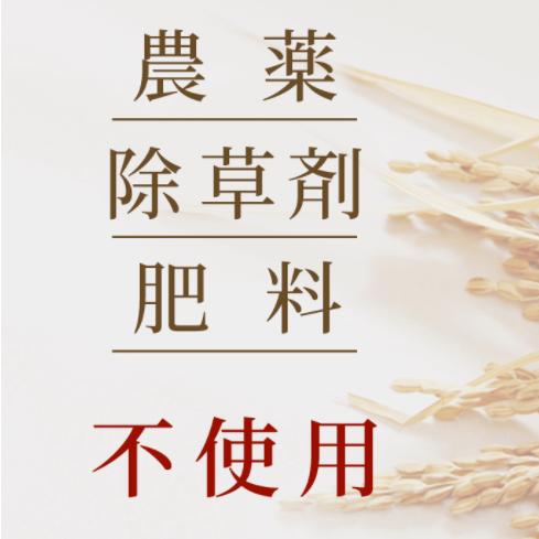 木村式自然栽培玄米 朝日 在来種 【5�】 会員価格あり