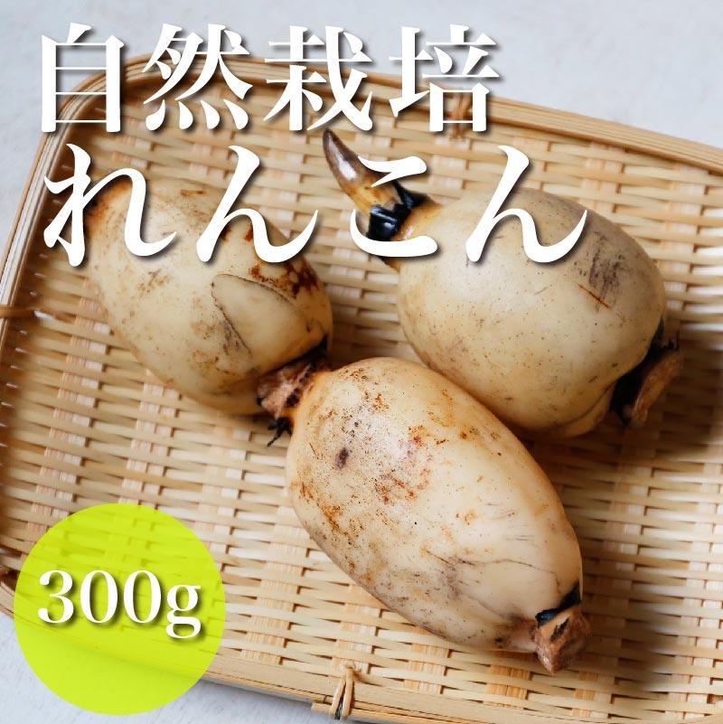 竜田さんの自然栽培れんこん 300g