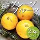 津曲さんの自然栽培グレープフルーツ 2kg