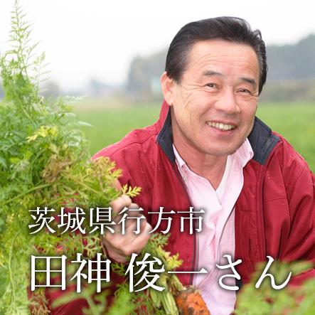 田神さんの自然栽培キャベツ 1個