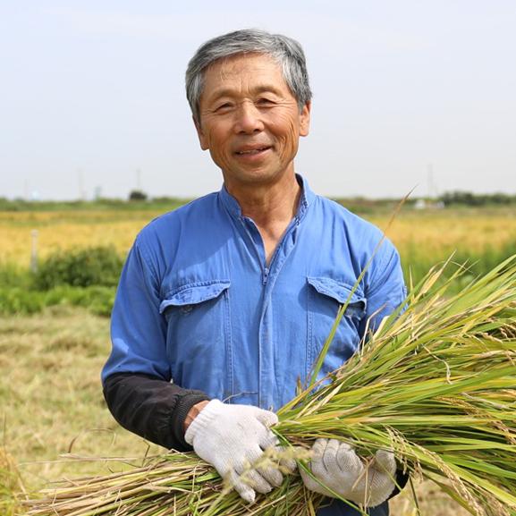 【定期購入商品:回数割引あり】瑞穂のしらべ 自然栽培コシヒカリ 白米 5kg