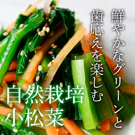 【豊作セール】自然栽培 小松菜 3袋