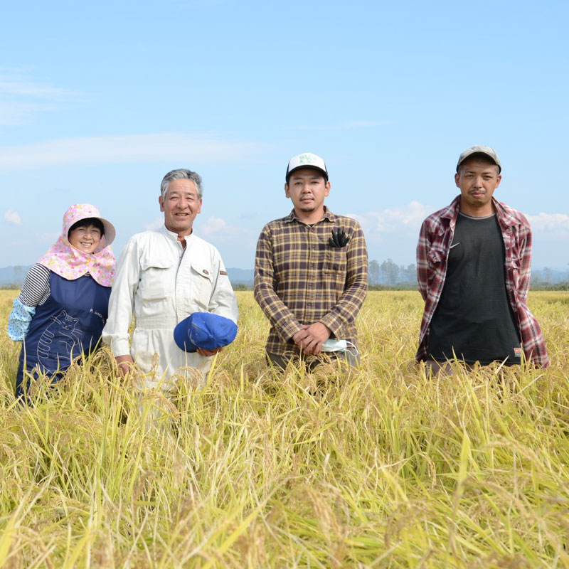 ふるまい 自然栽培米 玄米 5kg
