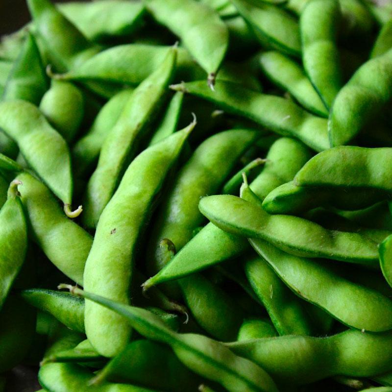 自然栽培 枝豆 1kg