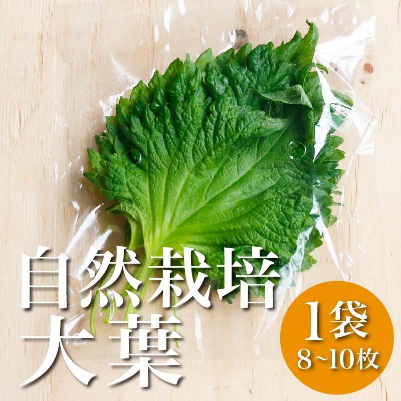 自然栽培大葉 1袋(約8〜10枚)