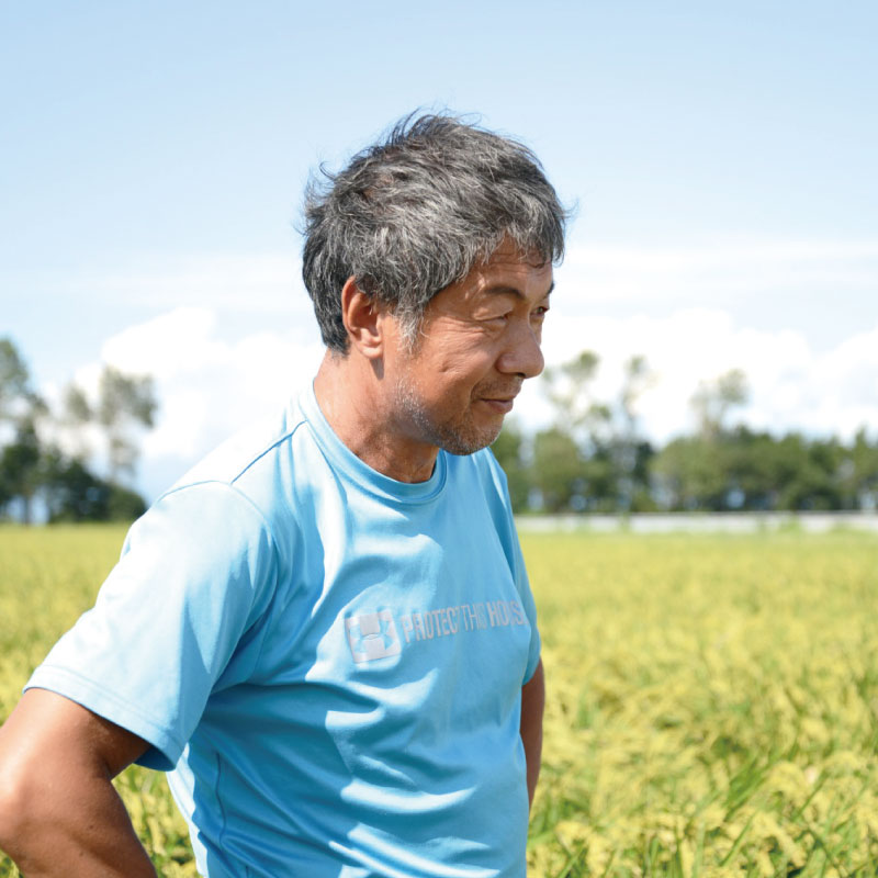 かかしの夢 自然栽培ササニシキ  玄米  5 / 3 / 1.5 kg