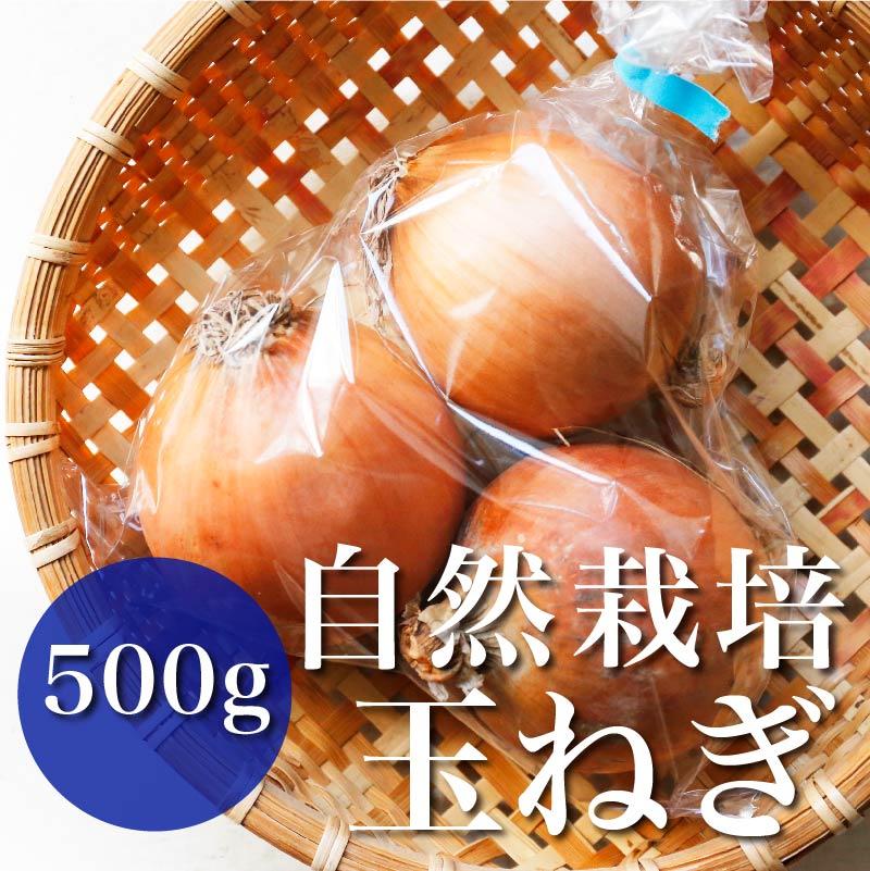 自然栽培玉ねぎ  500g
