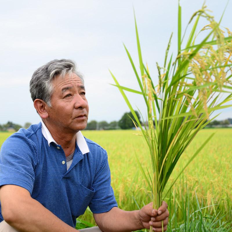 石山さんの自然栽培ササニシキ 玄米 5kg / 2kg