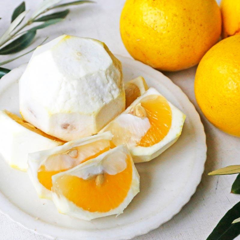 自然栽培ニューサマーオレンジ 1kg