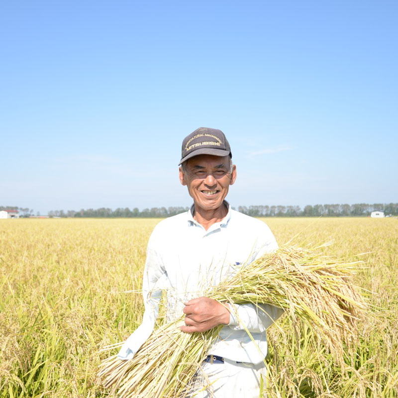 ふるまい 自然栽培米 白米 5kg