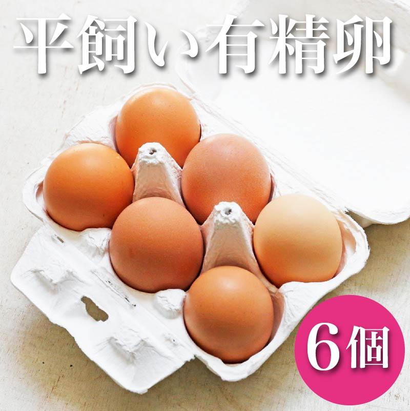 【最短日でのお届け】棚原さんの平飼い有精卵 6個