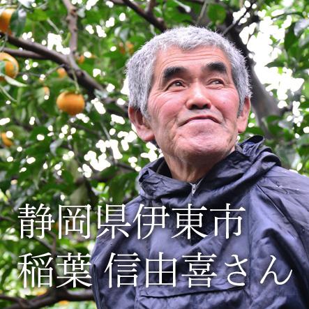 稲葉さんの自然栽培はるみ 1kg