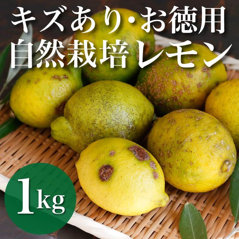キズあり・お徳用 自然栽培レモン 1kg