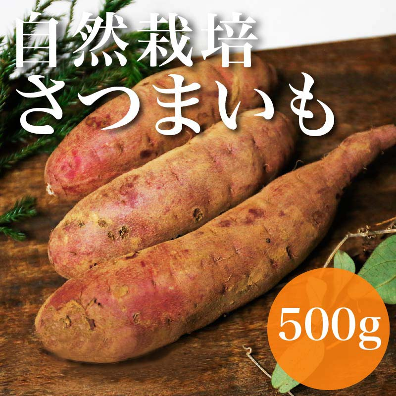 【ホクホクやさしい甘み♪】自然栽培さつまいも 500g