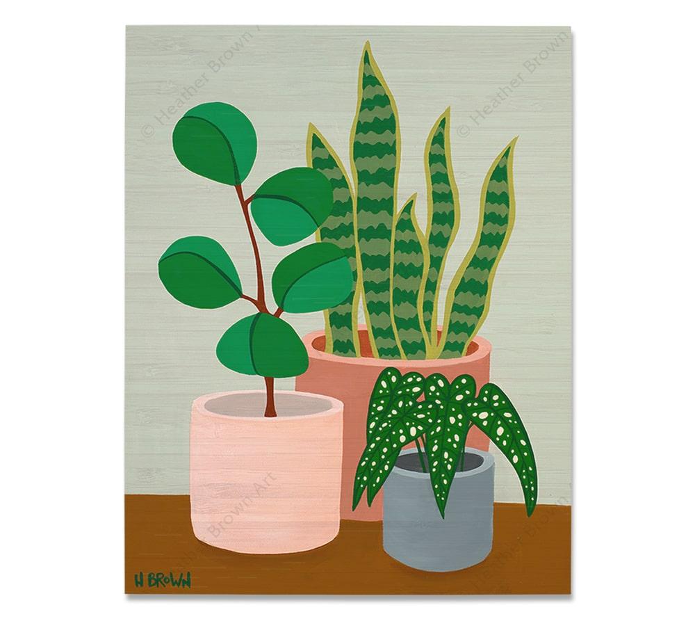 Plant #2602<br>【バンブー・プリント】
