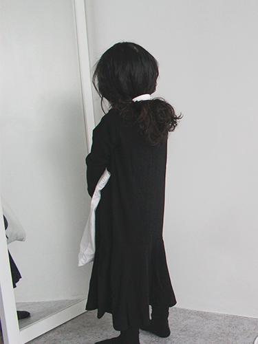 chat noir onepiece