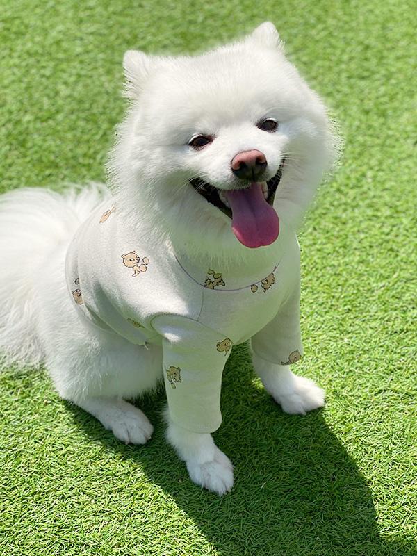 ALL DOGS LOVE jacquard bear tops