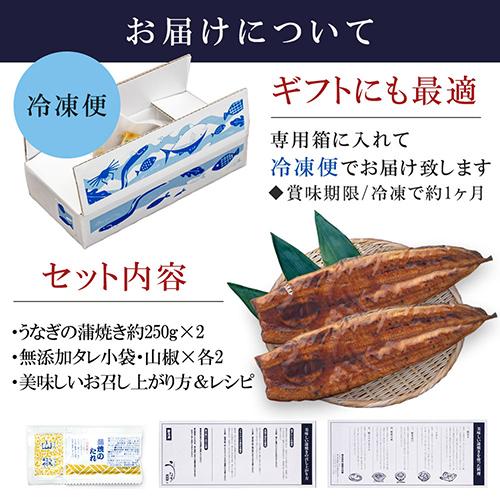 特大 鹿児島産うなぎ|蒲焼1尾(たれ・山椒付)刻み2袋セット