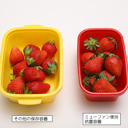 HD抗菌ランチ [タイトボックス500mL レッド] お弁当箱
