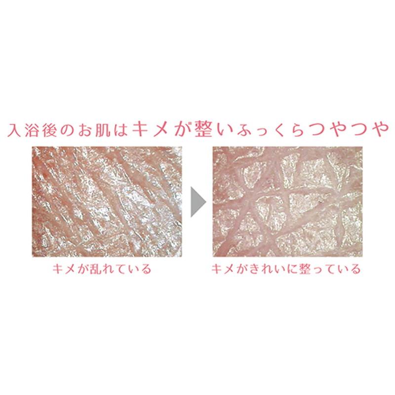 プレミアム ホットタブ重炭酸湯 Bio 100錠【送料無料】