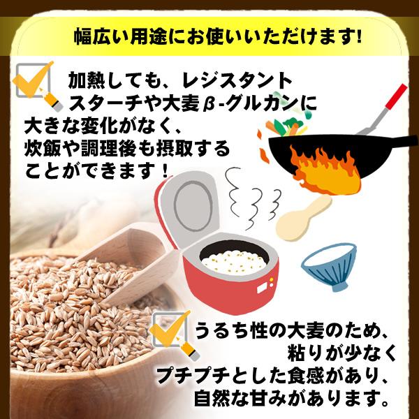 バーリーマックス 900g×3 スーパー大麦