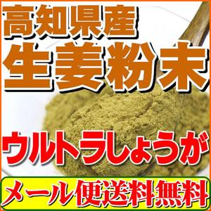 今話題の乾燥粉末しょうが(ウルトラ生姜)高知県産生姜パウダー100g殺菌蒸し工程 1cc計量スプーン入り