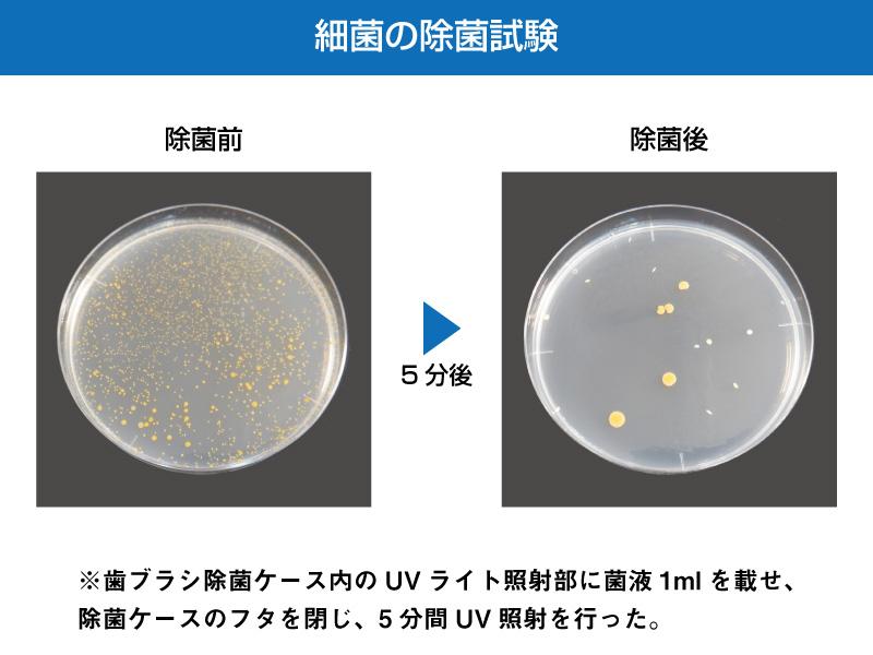 UV除菌+ファン乾燥 除菌 除菌ケース オーラルドクター オーラル 歯ブラシ除菌
